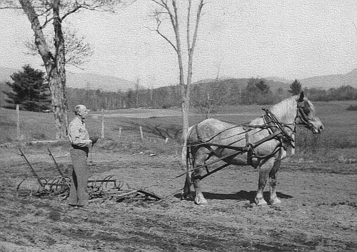 Harold W. Robinson back home on the farm in Vermont while on furlough